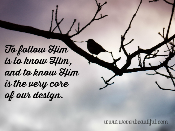 To Really Follow Jesus, Woven Beautiful, by Hannah